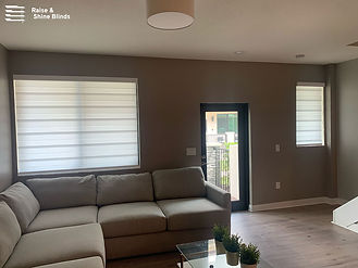 white-zebra-shades-living-room-doral.jpg