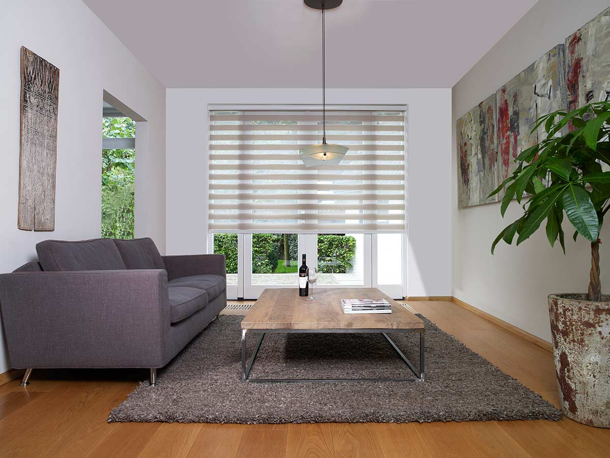 translucent-zebra-shades-livingroom.jpg