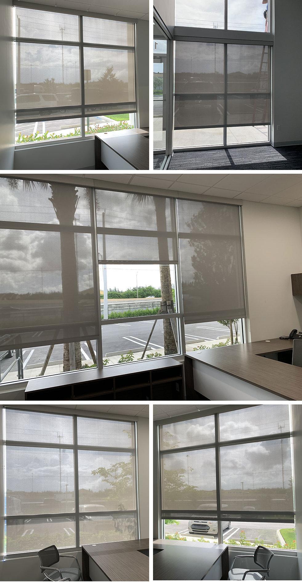 evi-steiner-collage.jpg
