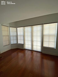 roller-shades-in-livingroom-davie.jpg