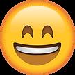 Smiling_Emoji_with_Smiling_Eyes_large.pn
