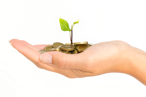 Sacred Green Money Circle Reiki - Attract Abundance & Prosperity into your Life!