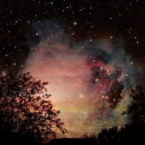 Star Healing Reiki - Self Awareness & Inner Empowerment