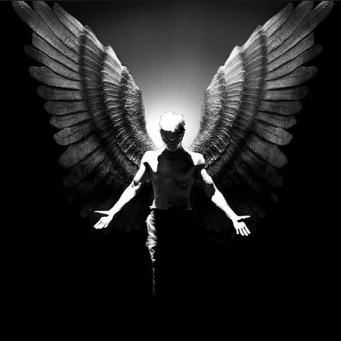 Divine Human Angel Reiki - Are you a Human Angel?