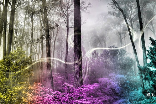 Magical Nature Reiki - Spiritual Connections with Fairies & Elves