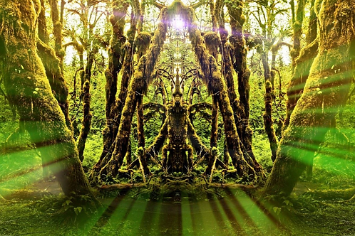 Nature Shaman Reiki - Mother Earth & Nature Deva Connections