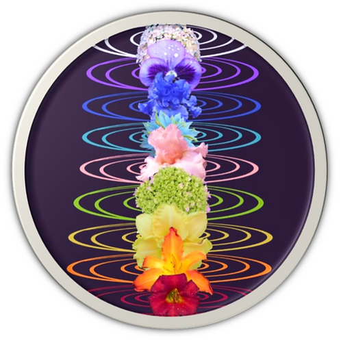 The Chakra Flower Essence Activation - Raise your Energies with Etheric Flowers