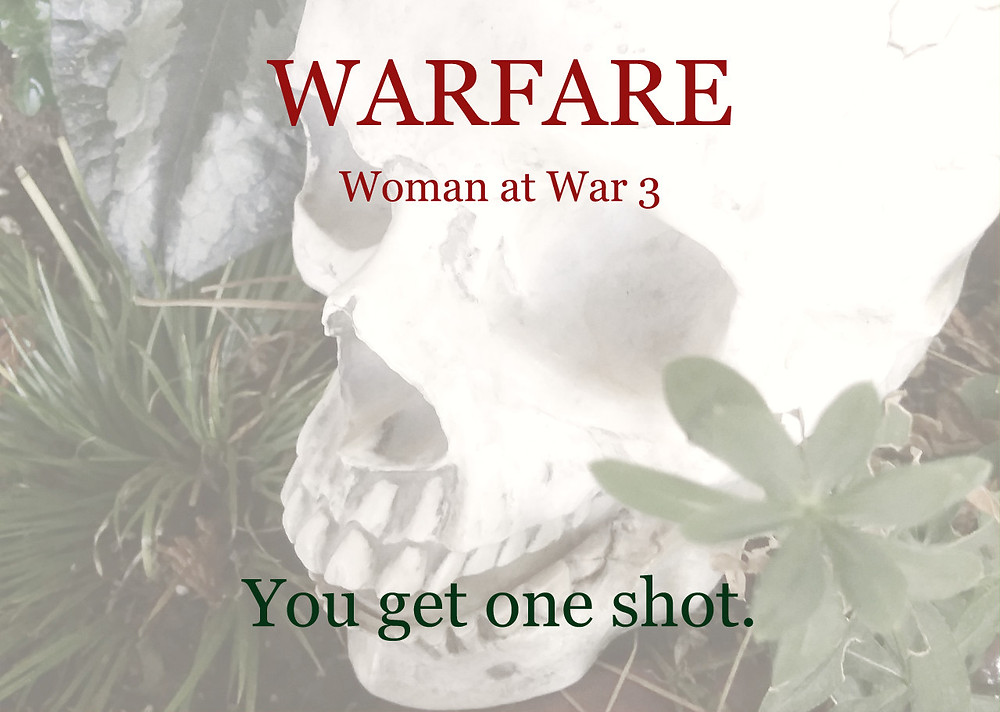 Simple skull among plants promoting Warfare, Woman at War book 3. Tagline: You get one shot.
