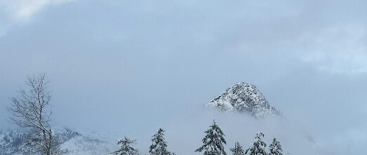 Snow-capped peak and winter trees among the clouds.