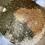 Thumbnail: Pick-Me-Up Salt Scrub