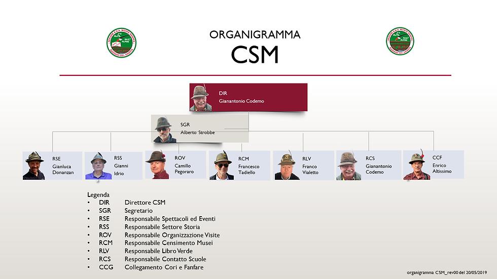 Organigramma CSM.png
