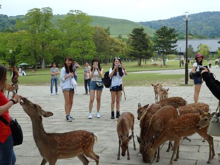 El Parque Nara