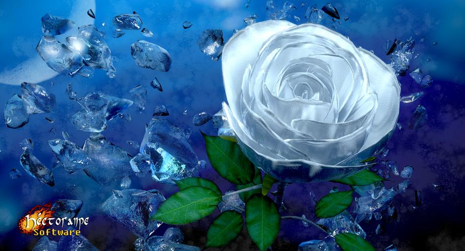 White rose render.png
