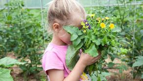 9 Tips for Raising Kids who LOVE to Eat & Live Seasonally