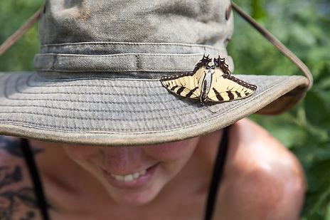 metzger meg butterfly.JPG