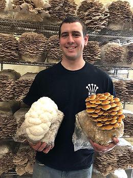 mushrooms, David King.jpg