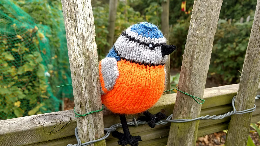 What kind of knitted bird is this?