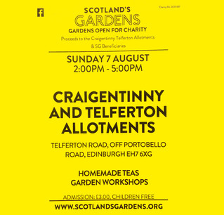 Allotments Open Day - Sunday 7th August