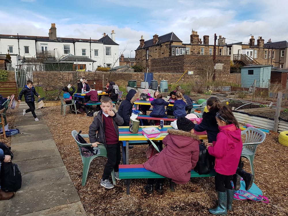 Craigentinny P3 pupils on the Community Plot