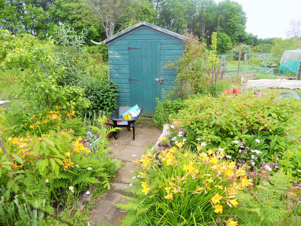 Colourful shed on Craigentinny Telferton Allotments