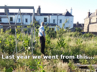 The Allotments Need YOU!