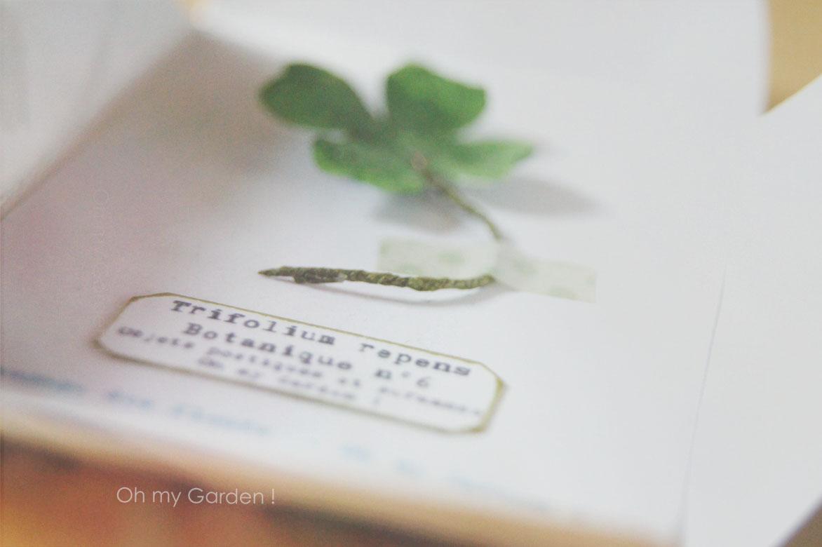 Botanique sous enveloppe