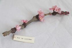 Fleurs de Sakura en papier