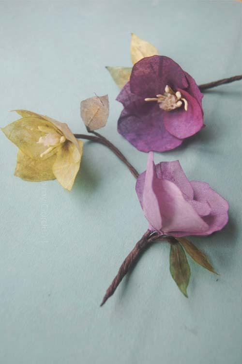 Hellébore fleur artiste papier