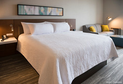 H_ilton Garden Inn Wausau K1 Guest Room Standard King_edited
