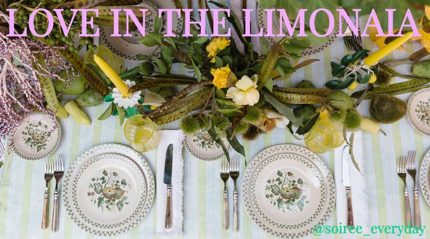 LOVE IN THE LIMONAIA
