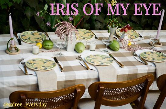 IRIS OF MY EYE