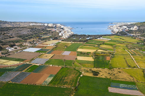 Aerial view of green colorful agricultur