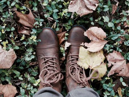 Preferência das consumidoras na escolha entre calçados de couro ou materiais substitutos