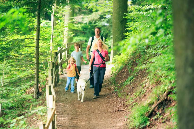 Family Of Four Hiking.jpg