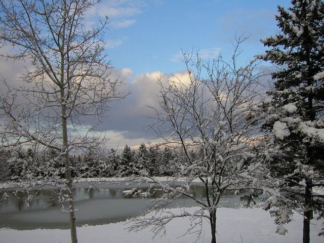 j Schumaker.Winter Pond jpg
