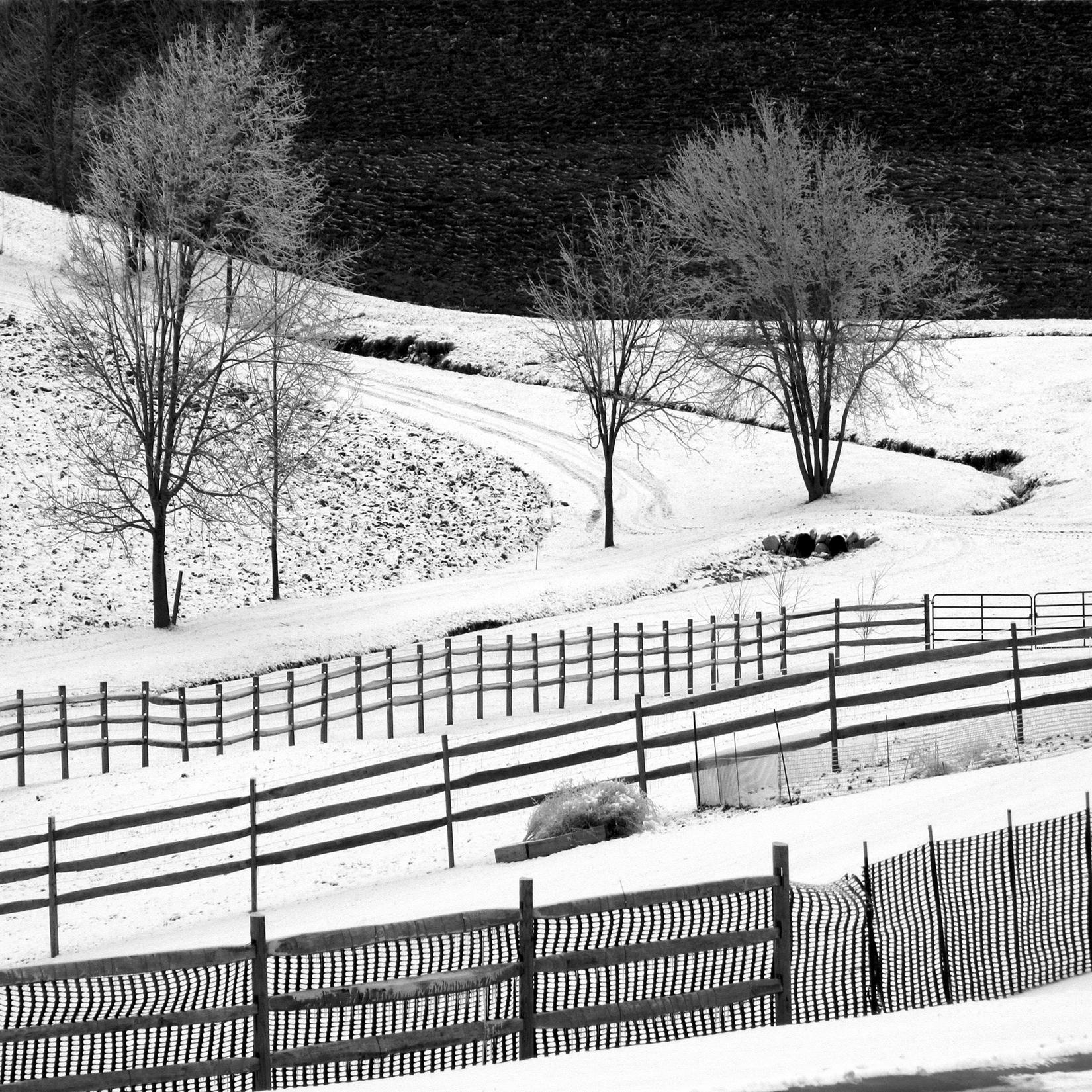 Dan Neuberger - Six Fences