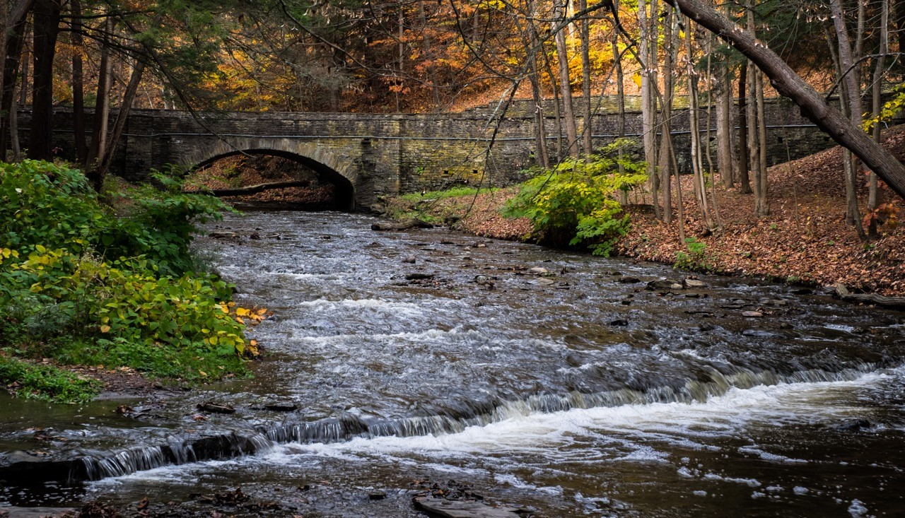 Wolf Creek Letchworh Park