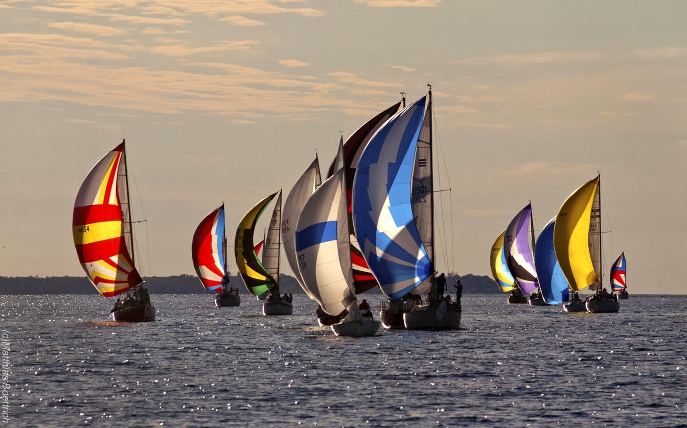 Spinnaker Fleet (c)Matthias Boettrich .jpg