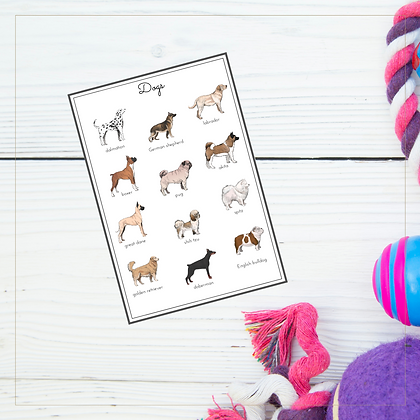 Dogs A4 Posters - Montessori - Homeschooling - Poster
