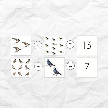 0 - 20 Math Activity Pack (Birds) - Montessori - Homeschooling - Bundle