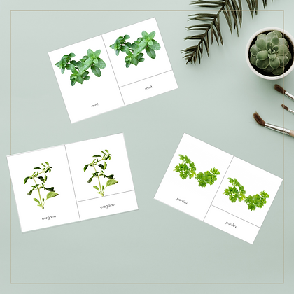 Herbs and Spices 3-Part Cards - Montessori - Homeschooling - 3-Part Cards