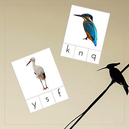 Birds Initial Sounds Cards - Montessori - Homeschooling - Sounds Cards