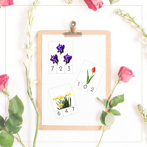 0 - 9 Clip Cards (Spring Flowers) - Montessori - Homeschooling - Cards