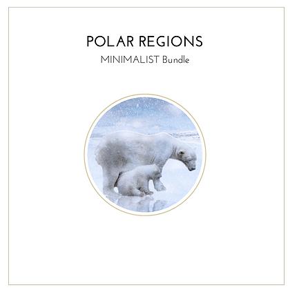 Polar Regions Minimalist Bundle