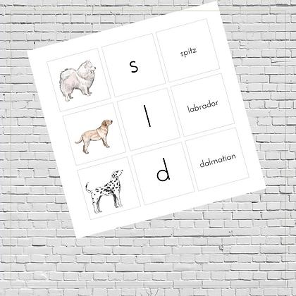 Memory Game & Initial Sounds Cards (Dogs) - Montessori - Homeschooling