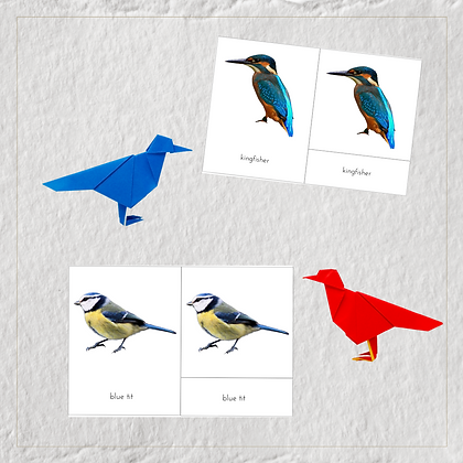 Birds 3-Part Cards - Montessori - Homeschooling - 3-Part Cards