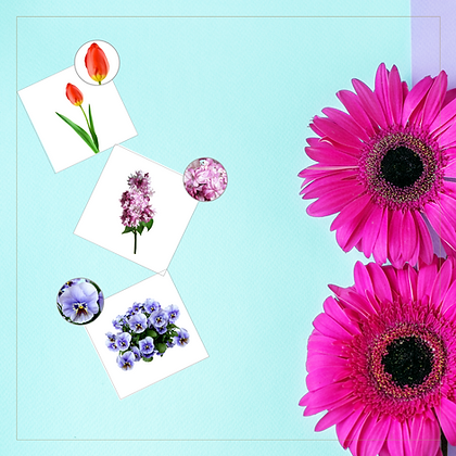 Matching Cards (Spring Flowers) - Montessori - Homeschooling - Matching Cards