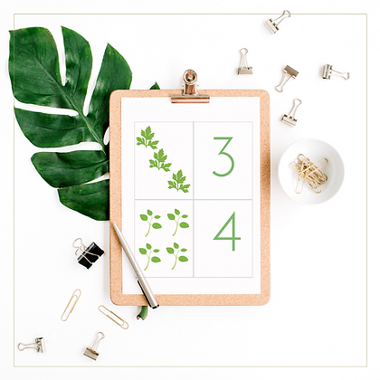 0 - 9 Counting Cards (Leaves) - Montessori - Homeschooling - Counting Cards