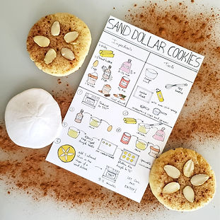 nick phillips - sanddollar cookies  visu