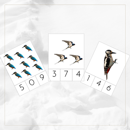 0 - 9 Clip Cards (Birds) - Montessori - Homeschooling - Cards